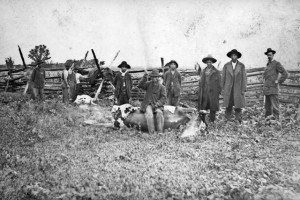 Modoc Men Slaughtering Cattle (includes Indian Agent Col D.B. Dyre) around 1870-80, courtesy Library of Congress