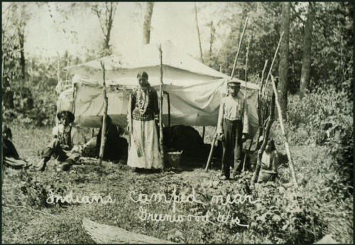Menominee Indian Indians Insanity And American History