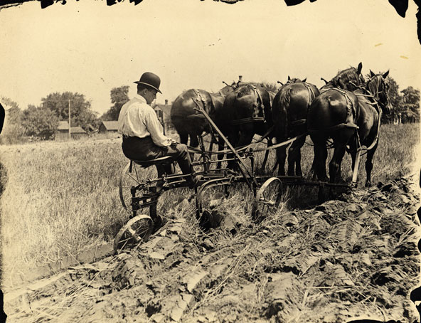 Homestead act indians insanity and american history blog for Kansas homestead act