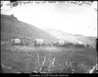 Wagon Train Between Echo Head & Hanging Rock, 1867, courtesy Library of Congress