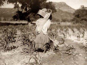 Indian Woman Working in Cornfield, 1906, Edward S. Curtis