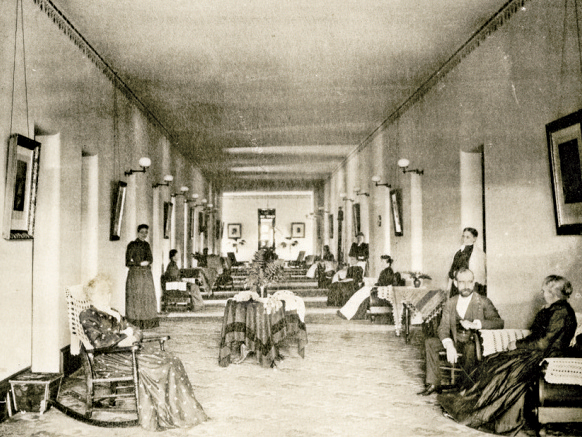 Disease and treatments in the victorian