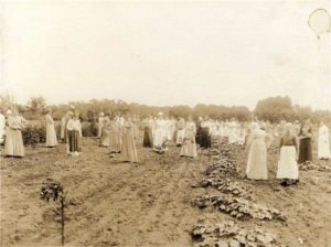 Female Patients Farming in the early 1900s